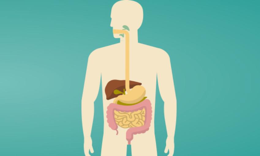Dia Nacional contra o Cancro Digestivo